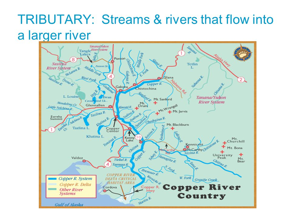 TRIBUTARY: Streams & rivers that flow into a larger river