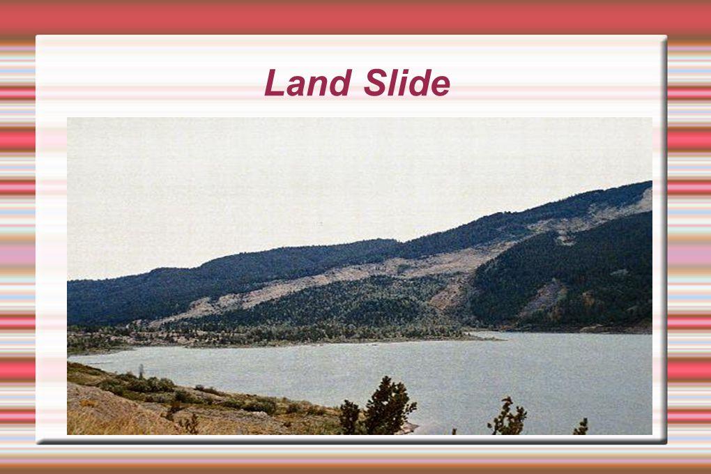 Land Slide cat