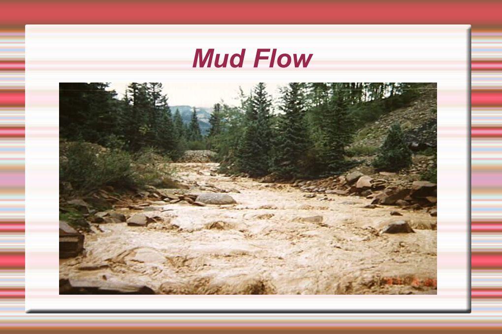 Mud Flow cat