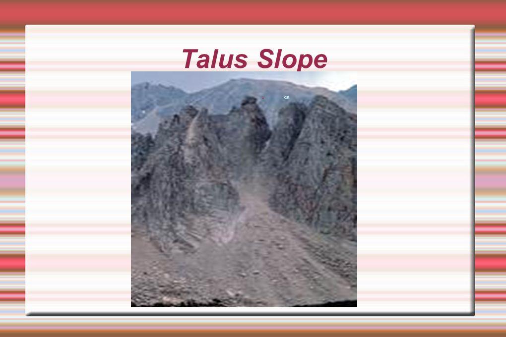 Talus Slope cat