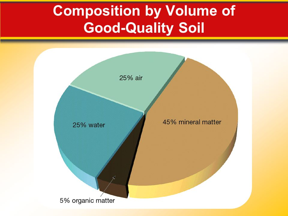 Composition by Volume of Good-Quality Soil
