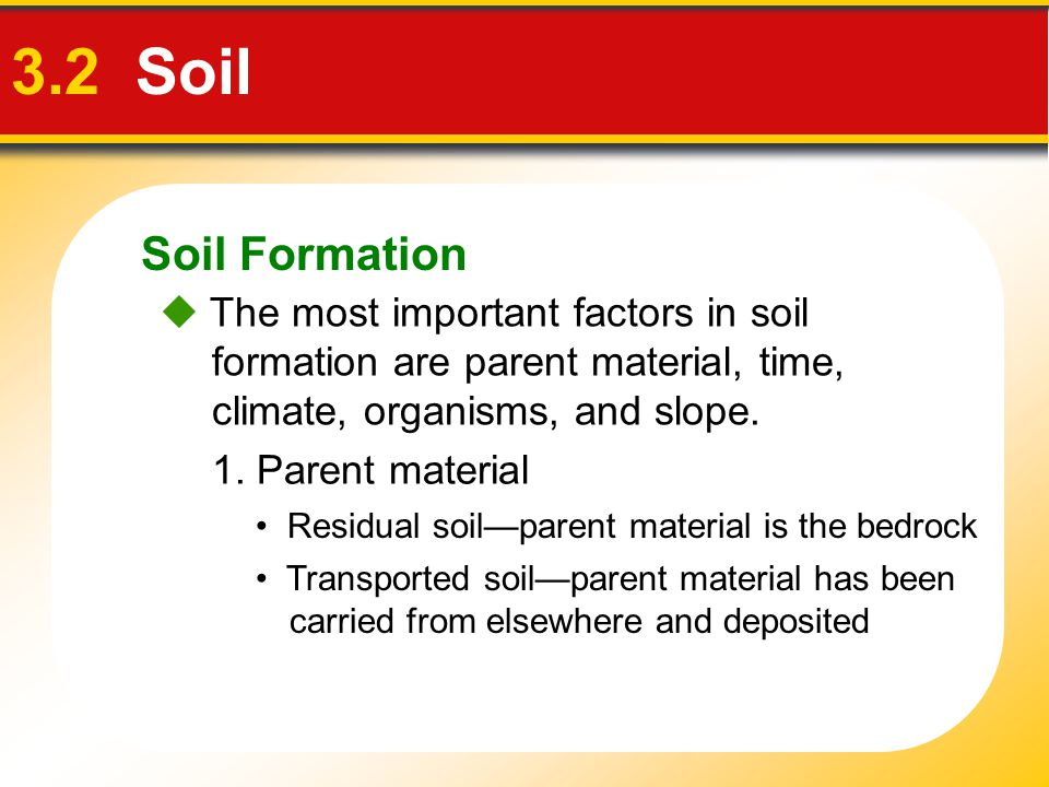 Soil Formation 3.2 Soil.  The most important factors in soil formation are parent material, time, climate, organisms, and slope.