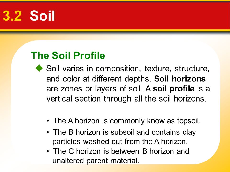 The Soil Profile 3.2 Soil.