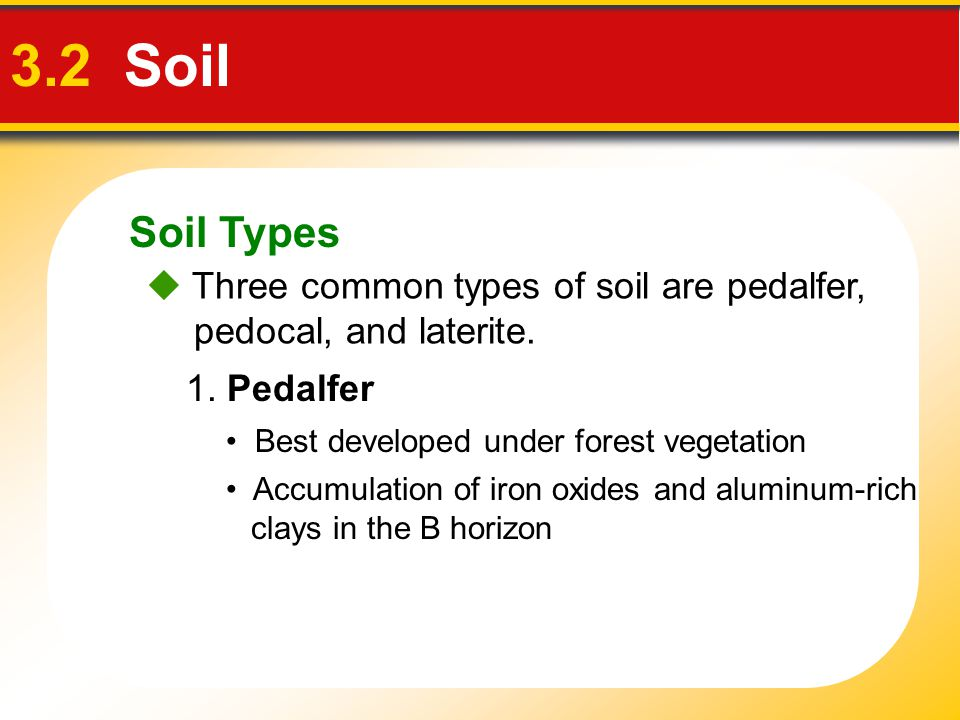Soil Types 3.2 Soil.  Three common types of soil are pedalfer, pedocal, and laterite. 1. Pedalfer.