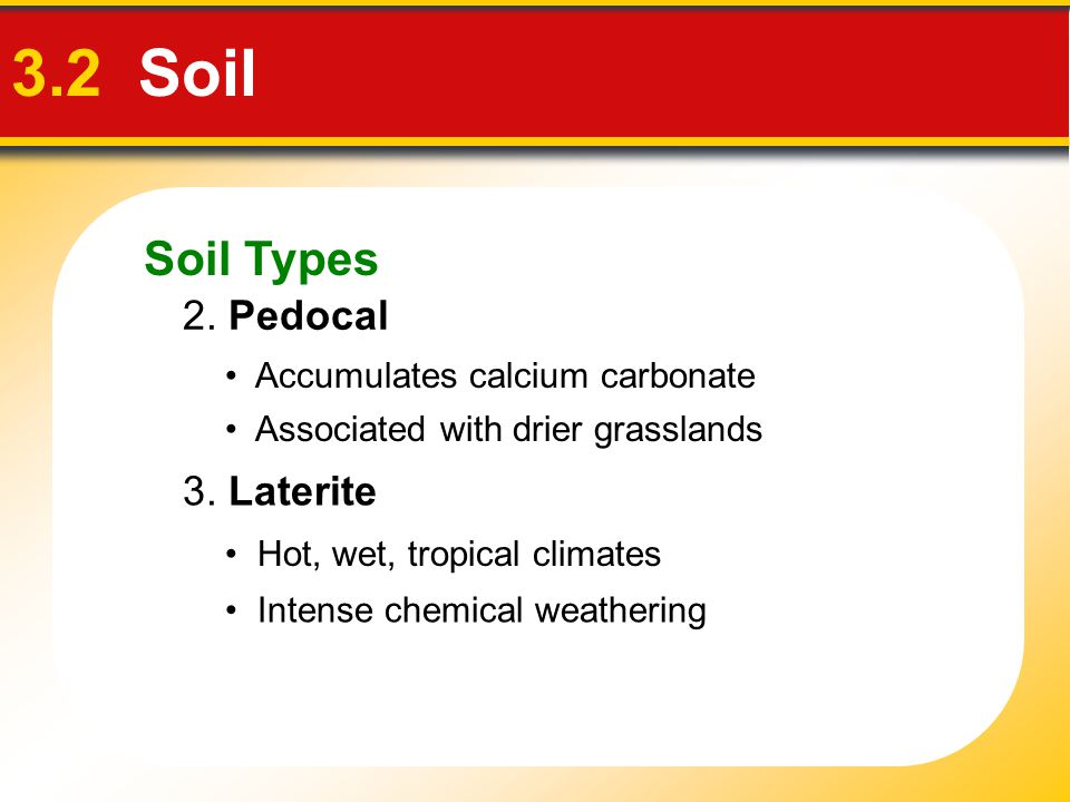 3.2 Soil Soil Types 2. Pedocal 3. Laterite