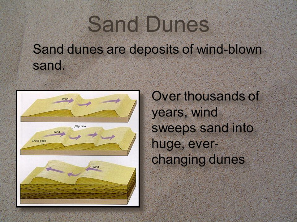 Sand Dunes Sand dunes are deposits of wind-blown sand.