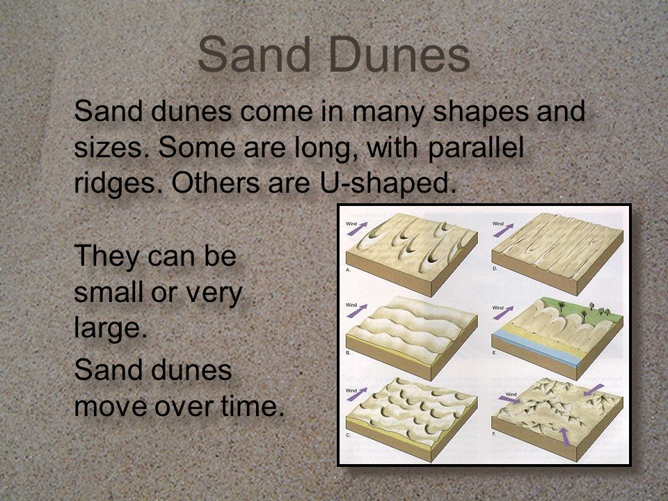 Sand Dunes Sand dunes come in many shapes and sizes. Some are long, with parallel ridges. Others are U-shaped.