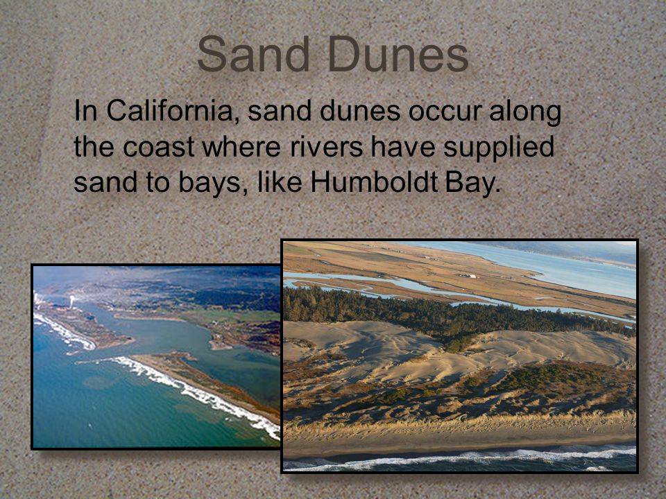 Sand Dunes In California, sand dunes occur along the coast where rivers have supplied sand to bays, like Humboldt Bay.