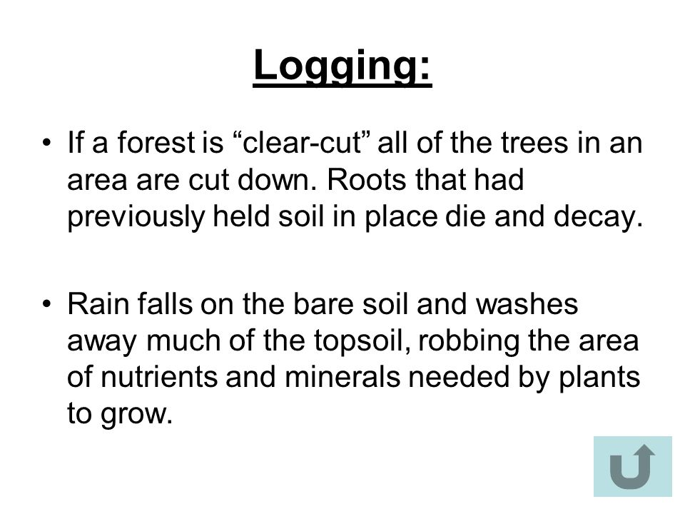 Logging: If a forest is clear-cut all of the trees in an area are cut down. Roots that had previously held soil in place die and decay.