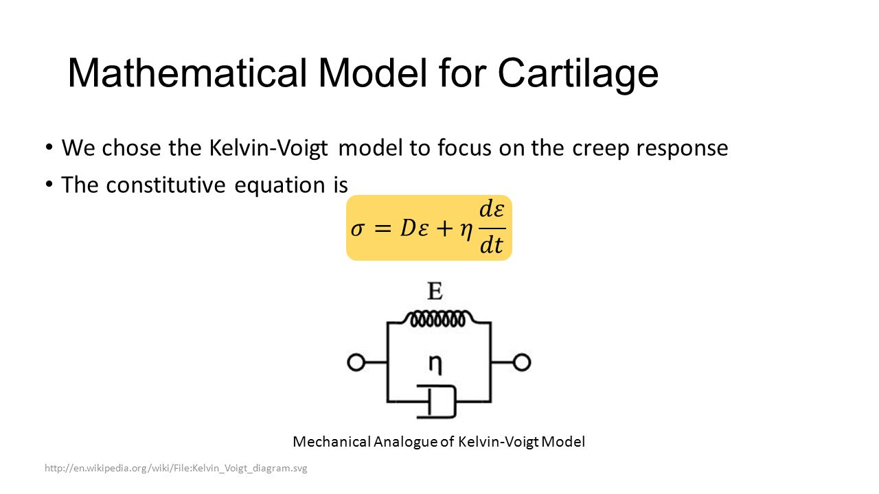 Mathematical Model for Cartilage