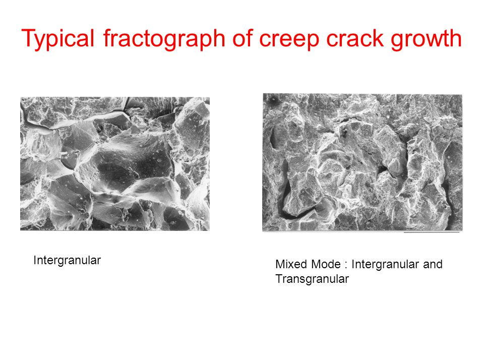 Typical fractograph of creep crack growth