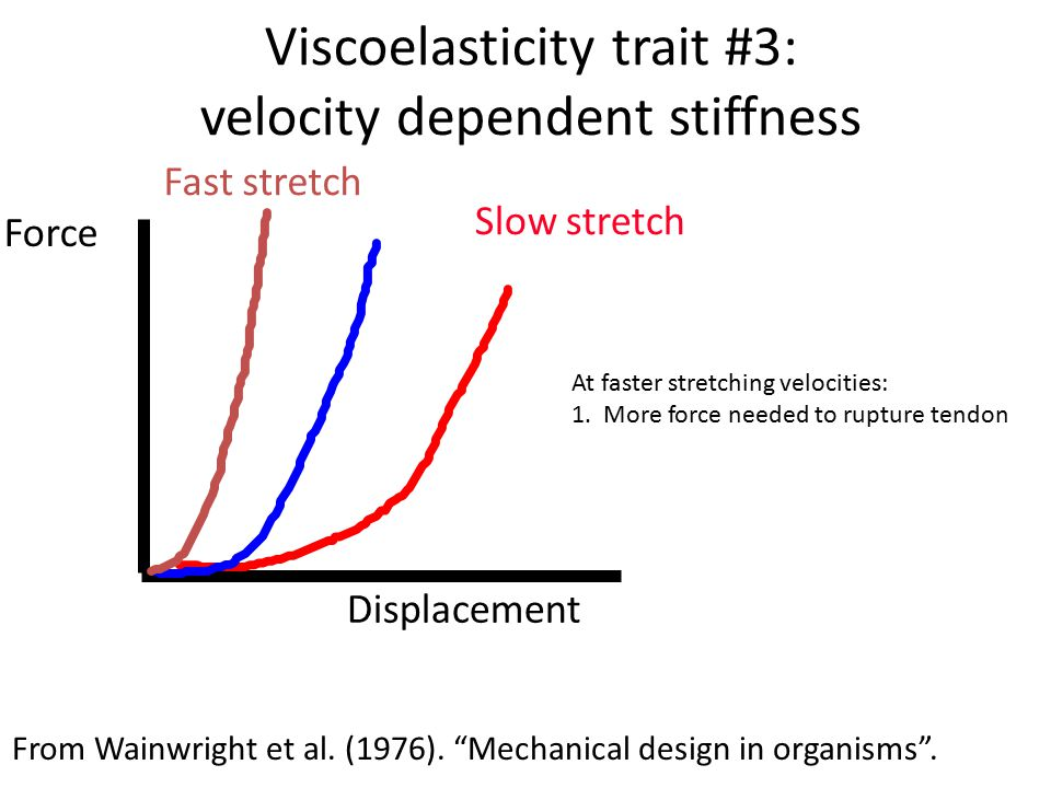 Viscoelasticity trait #3: velocity dependent stiffness