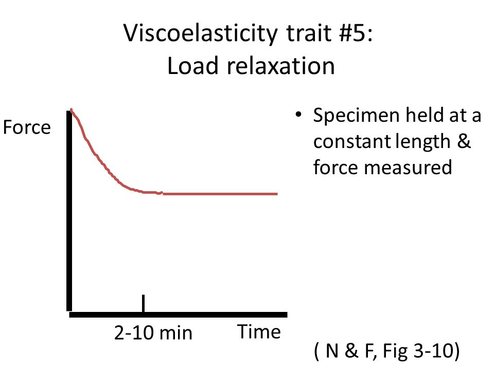 Viscoelasticity trait #5: Load relaxation