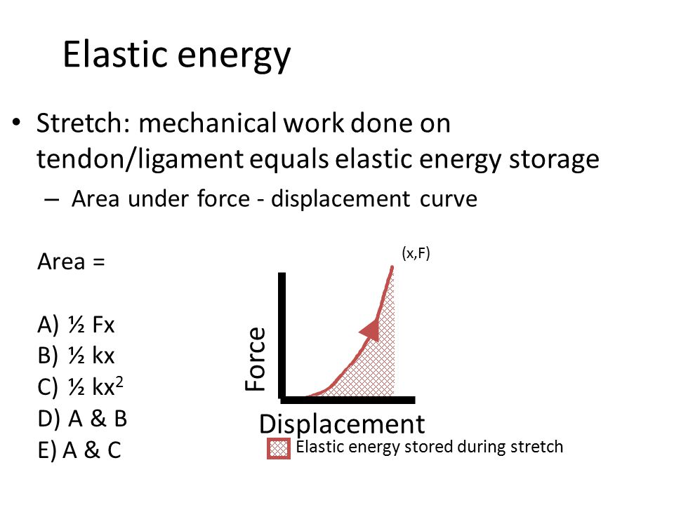 Elastic energy Stretch: mechanical work done on tendon/ligament equals elastic energy storage. Area under force - displacement curve.