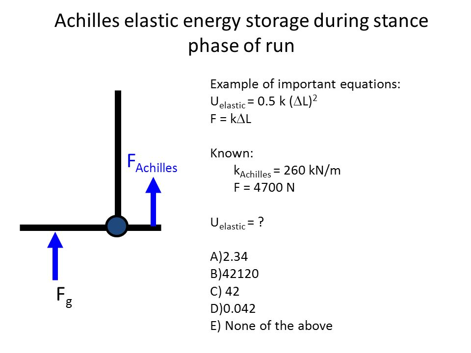 Achilles elastic energy storage during stance phase of run