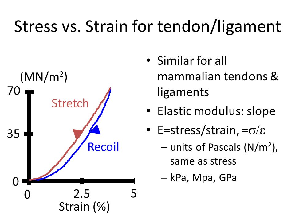 Stress vs. Strain for tendon/ligament