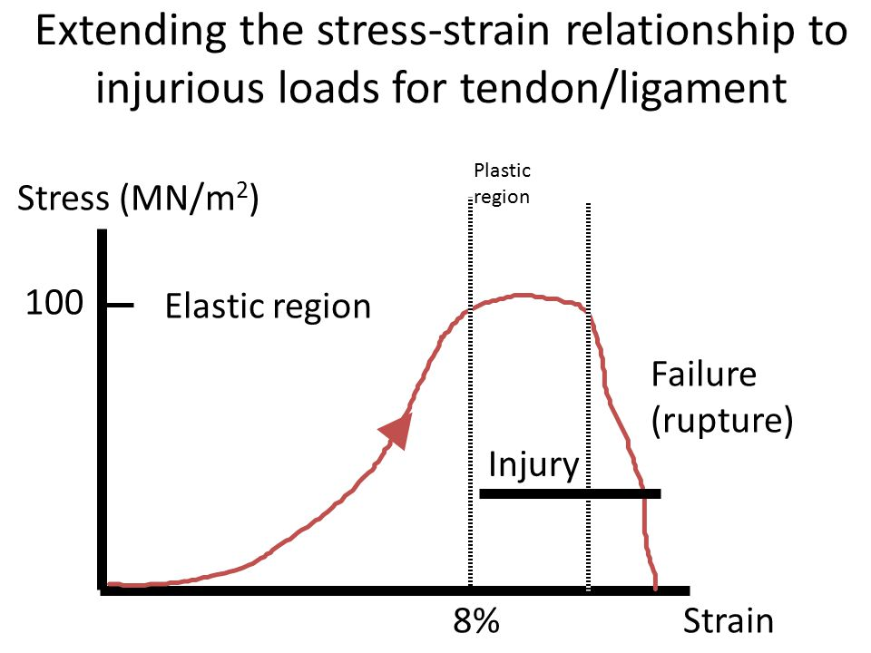 Extending the stress-strain relationship to injurious loads for tendon/ligament