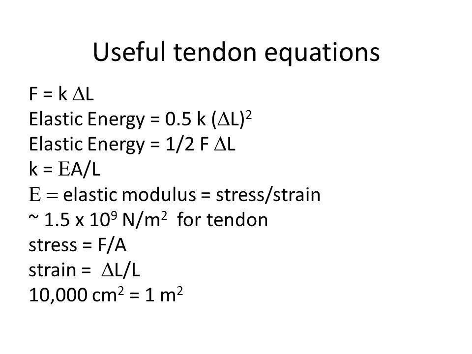 Useful tendon equations
