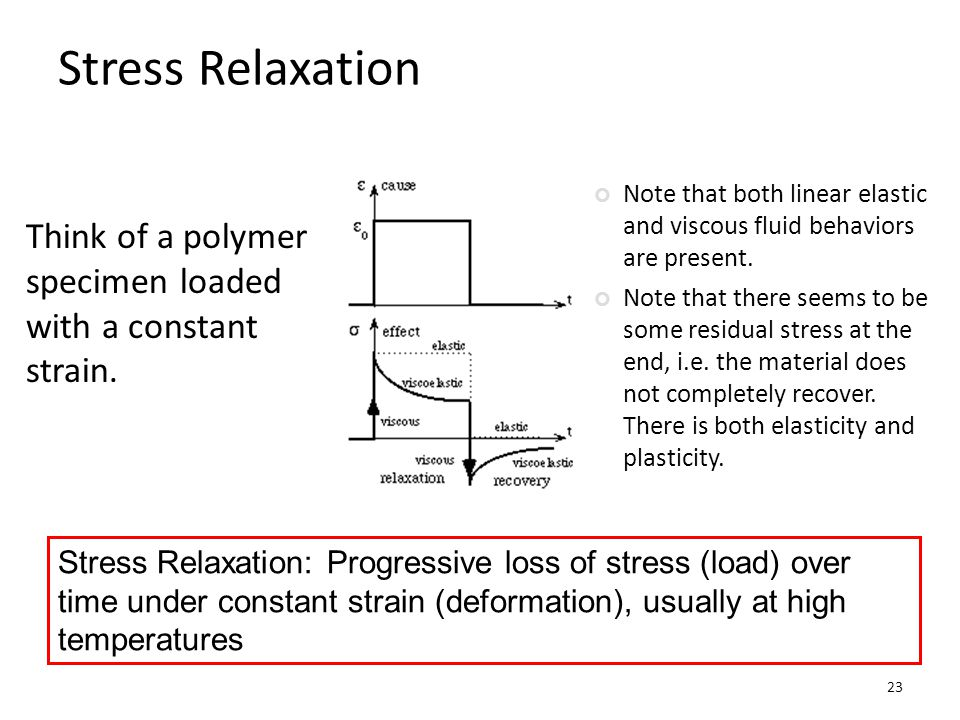 Stress Relaxation Note that both linear elastic and viscous fluid behaviors are present.