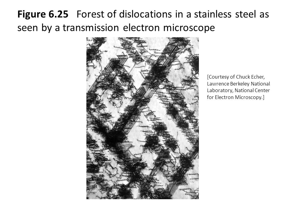 Figure 6.25 Forest of dislocations in a stainless steel as seen by a transmission electron microscope