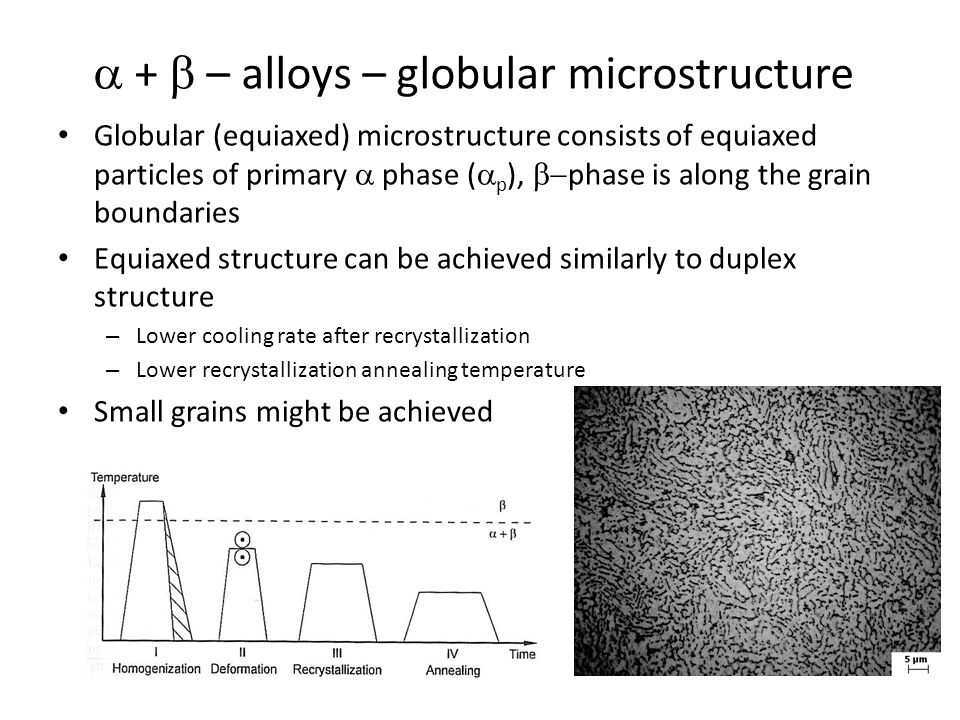 a + b – alloys – globular microstructure