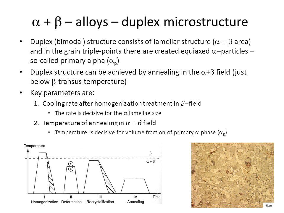 a + b – alloys – duplex microstructure
