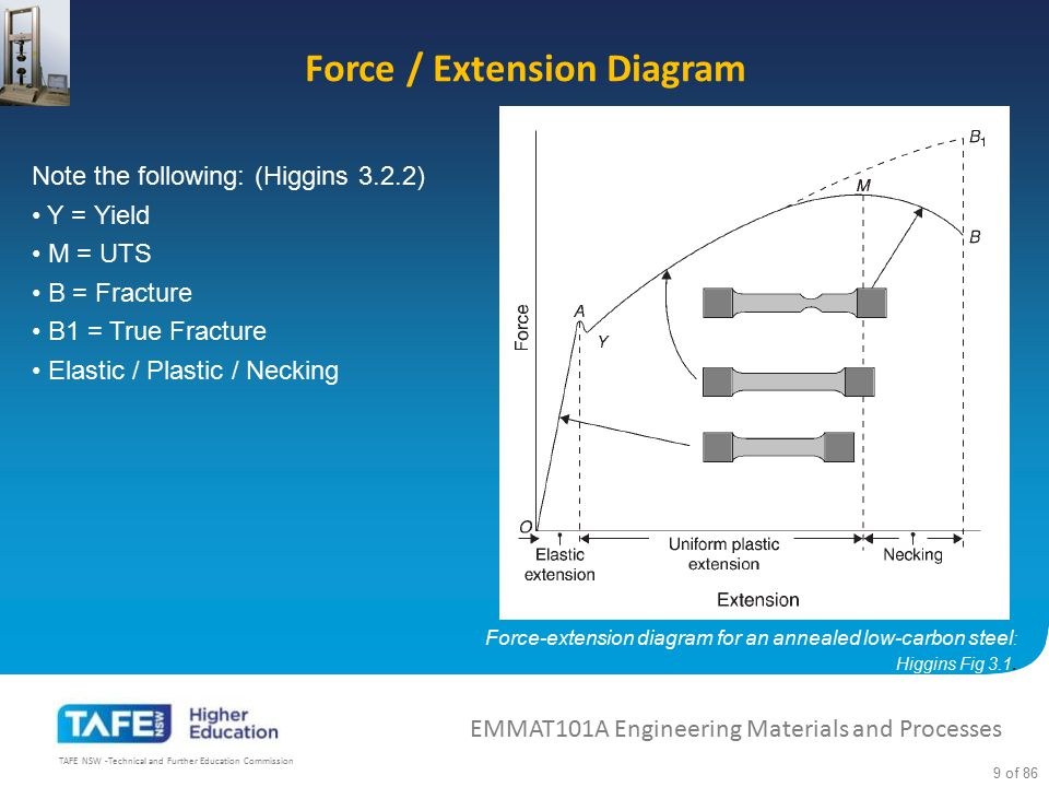 Force / Extension Diagram