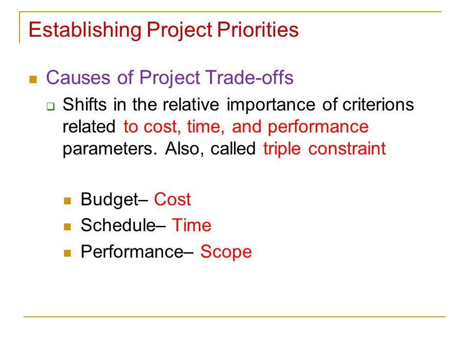 Establishing Project Priorities