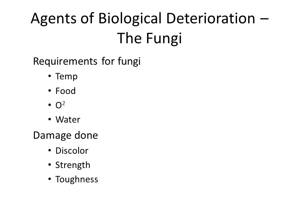 Agents of Biological Deterioration – The Fungi