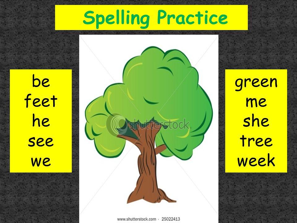 Spelling Practice be feet he see we green me she tree week