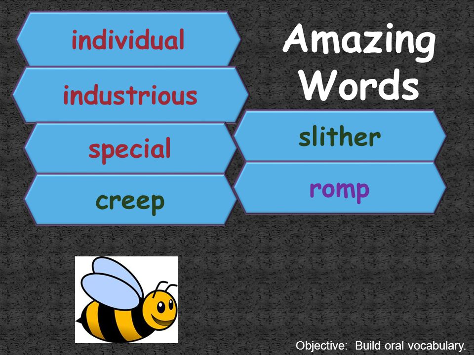 Amazing Words individual industrious slither special romp creep