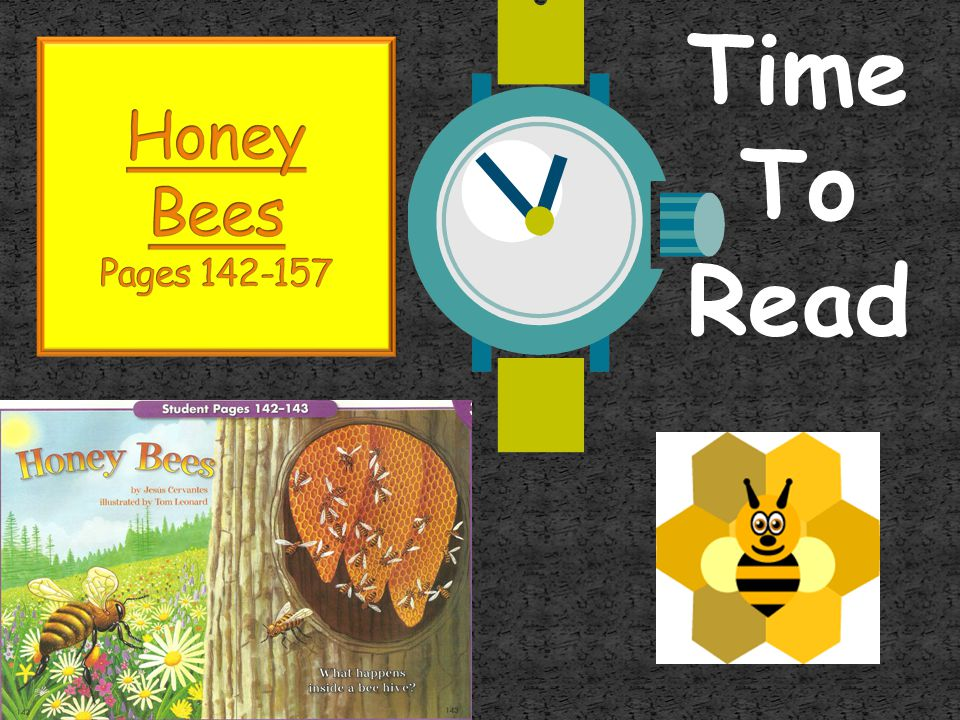 Time To Read Honey Bees Pages 142-157
