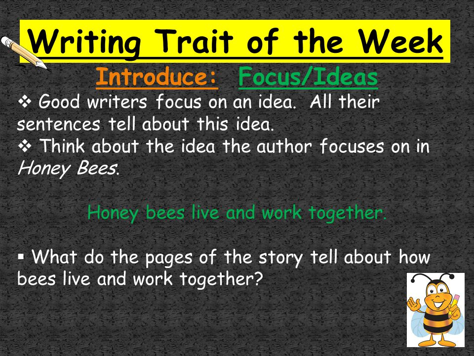 Writing Trait of the Week Introduce: Focus/Ideas