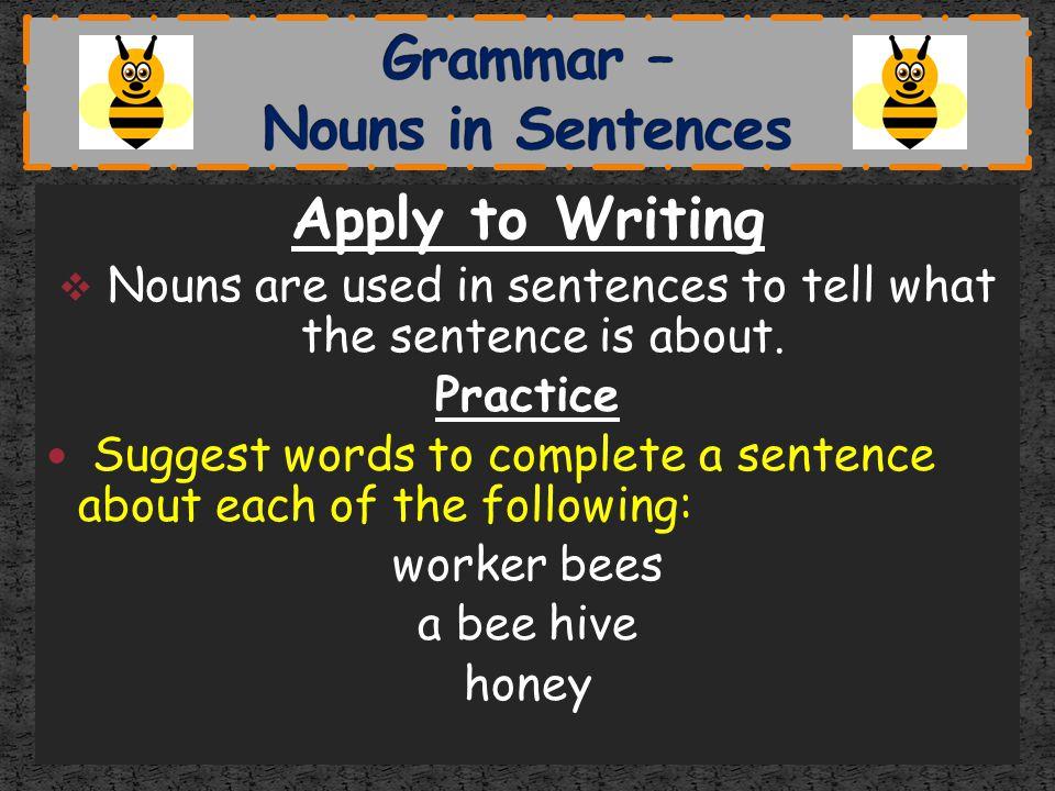 Grammar – Nouns in Sentences