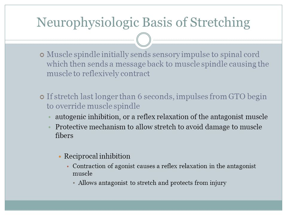 Neurophysiologic Basis of Stretching