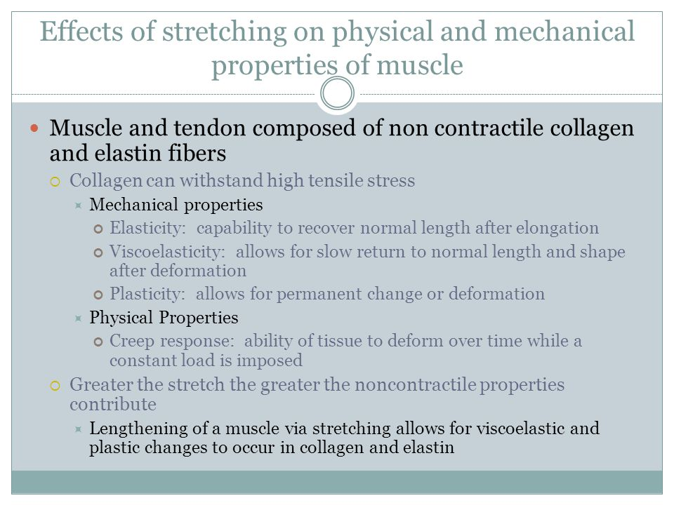 Effects of stretching on physical and mechanical properties of muscle