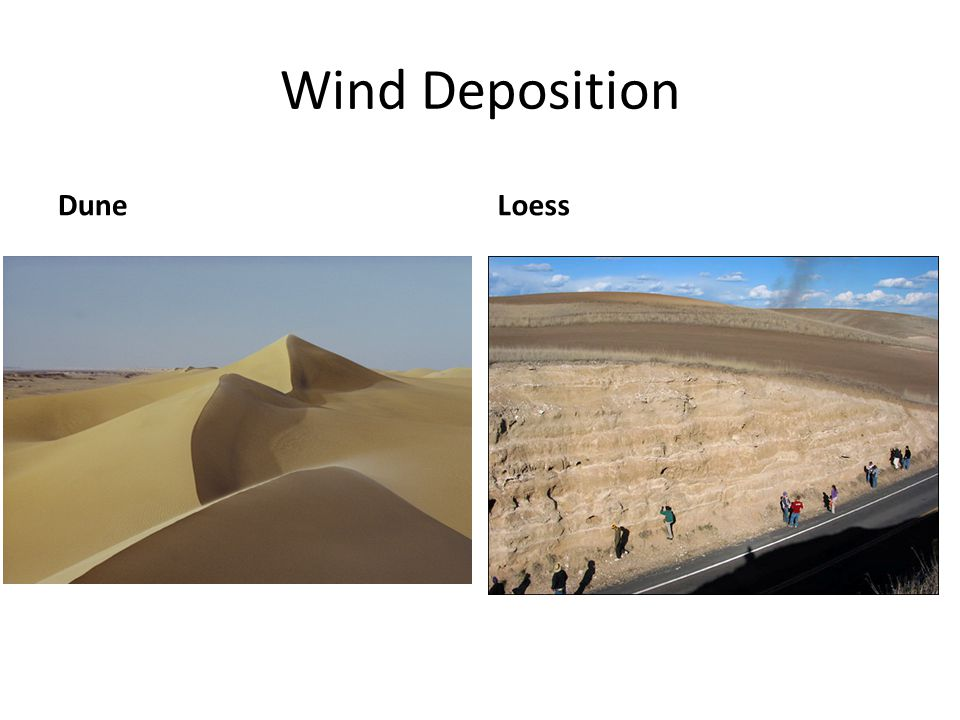 Wind Deposition Dune Loess