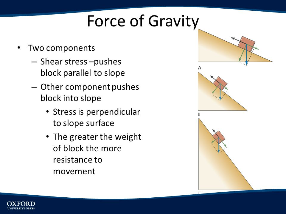 Force of Gravity Two components