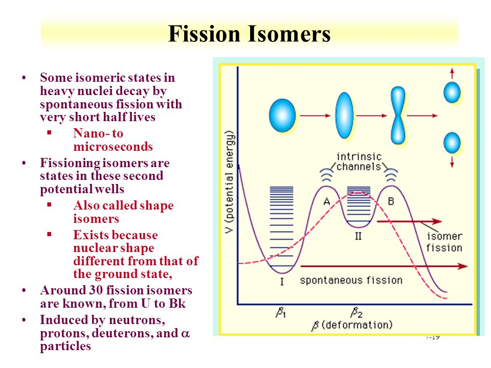 Fission Isomers Some isomeric states in heavy nuclei decay by spontaneous fission with very short half lives.