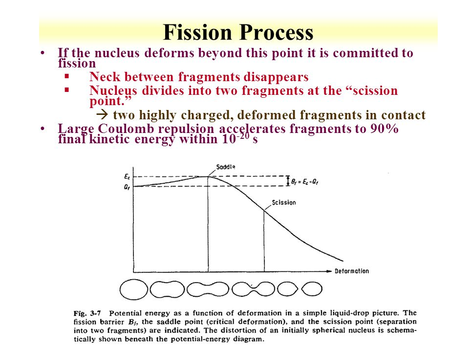 Fission Process If the nucleus deforms beyond this point it is committed to fission. Neck between fragments disappears.