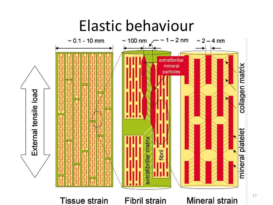 Elastic behaviour