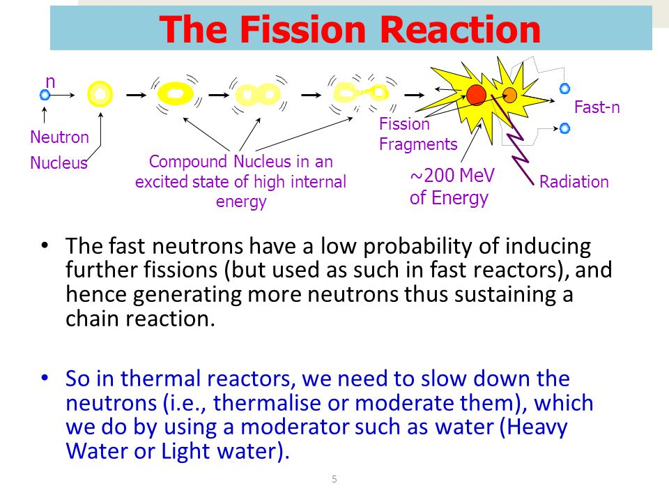 Compound Nucleus in an excited state of high internal energy