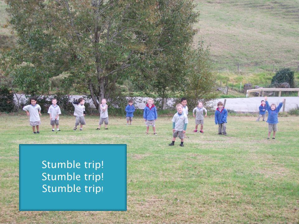 Stumble trip!