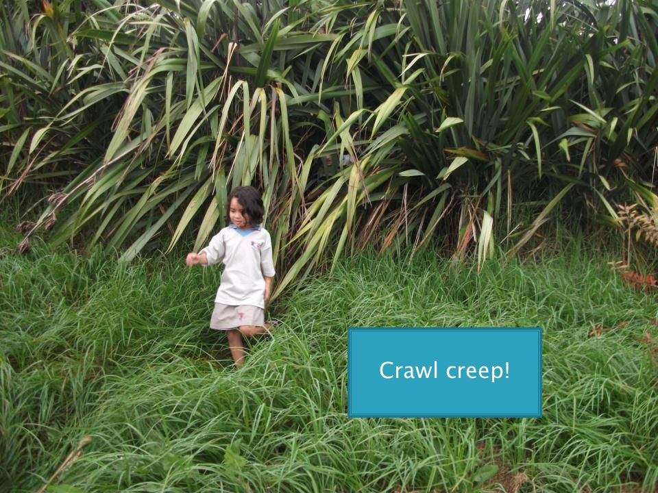 Crawl creep!