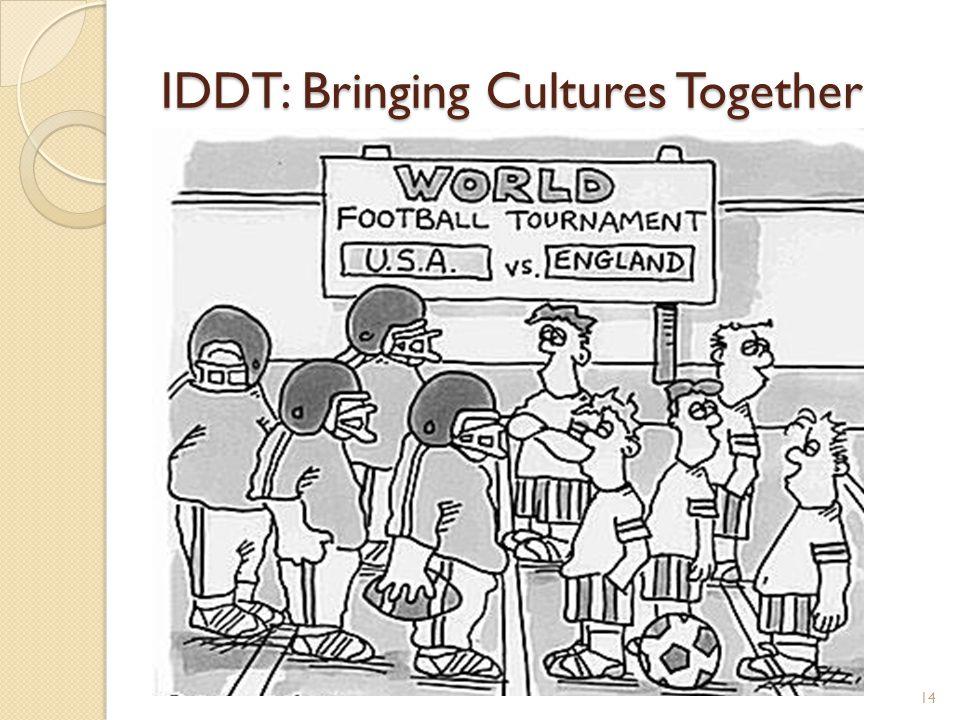 IDDT: Bringing Cultures Together