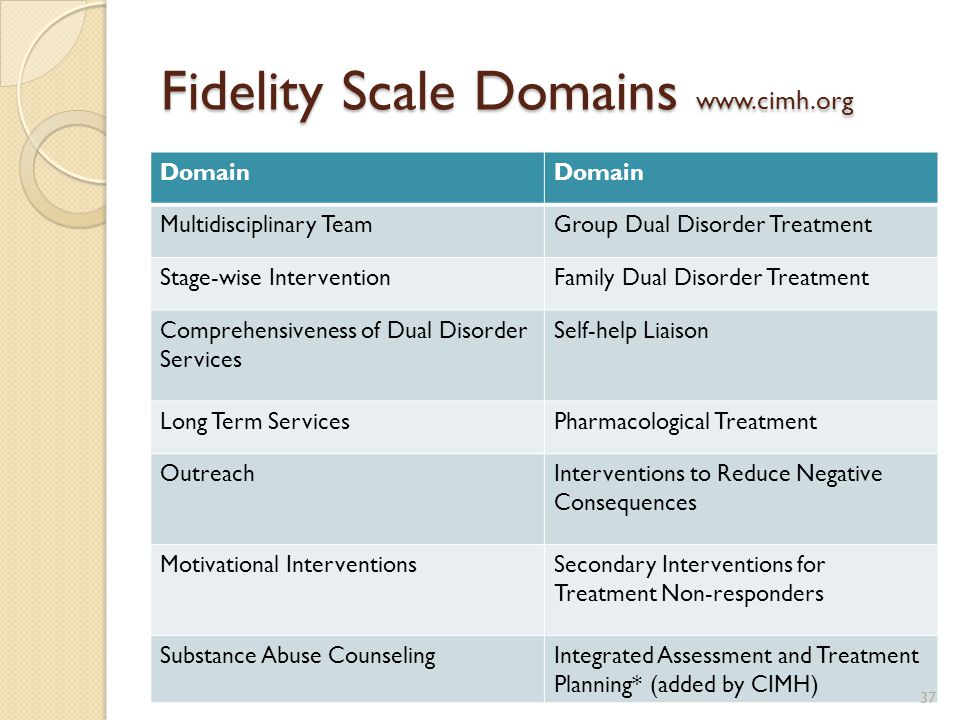 Fidelity Scale Domains www.cimh.org