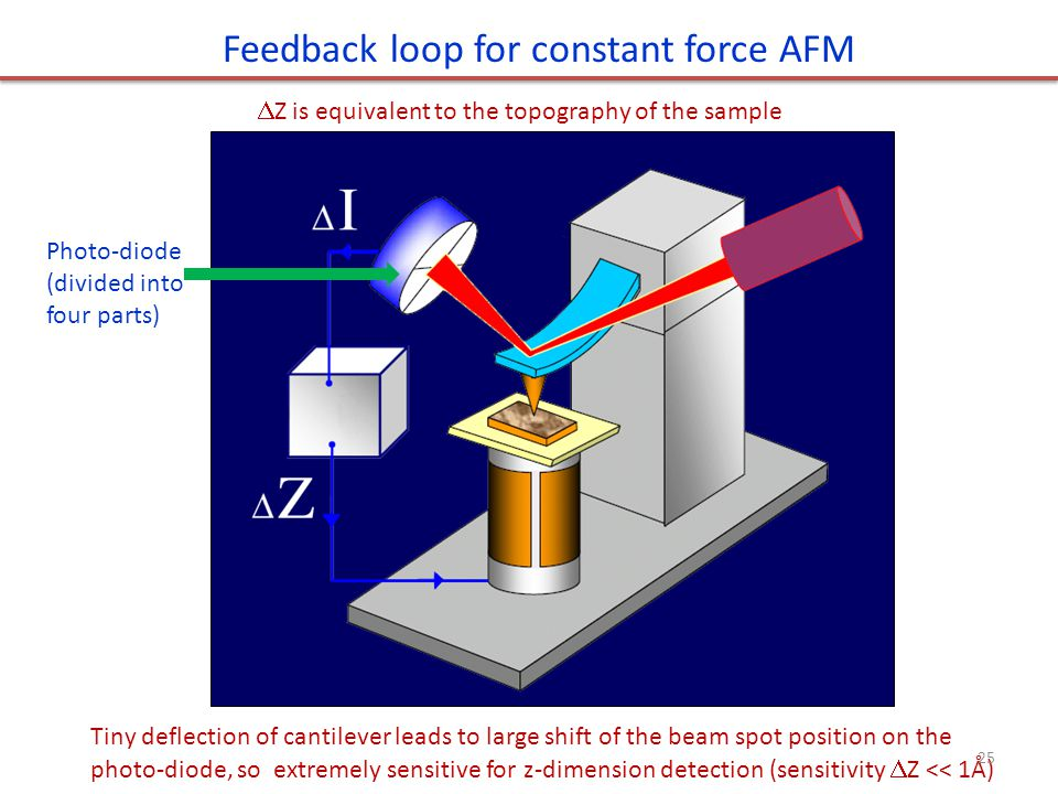 Feedback loop for constant force AFM