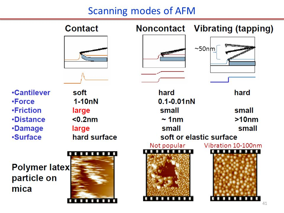 Scanning modes of AFM Not popular Vibration 10-100nm 50nm