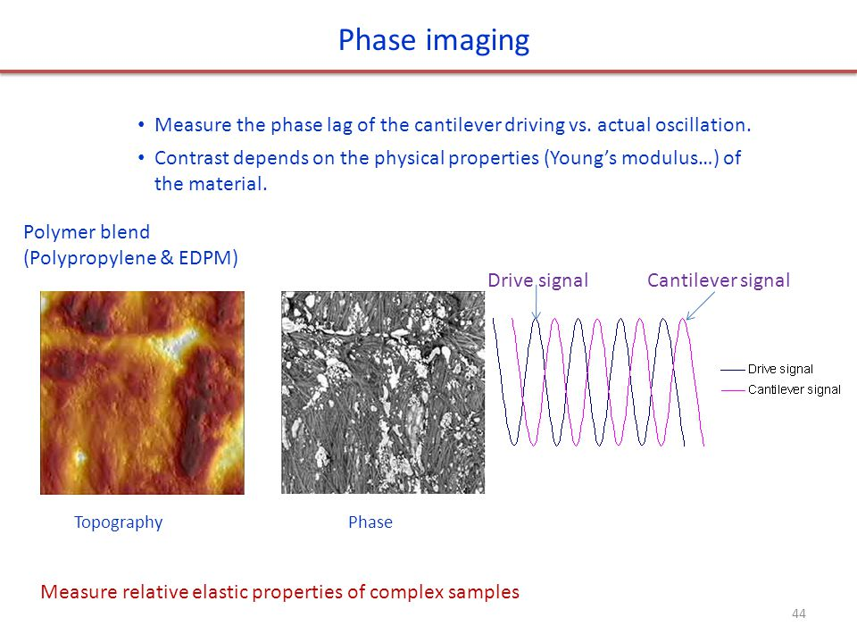 Phase imaging Measure the phase lag of the cantilever driving vs. actual oscillation.
