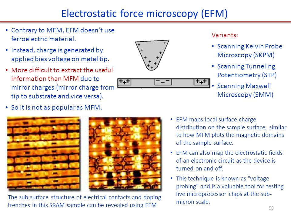 Electrostatic force microscopy (EFM)